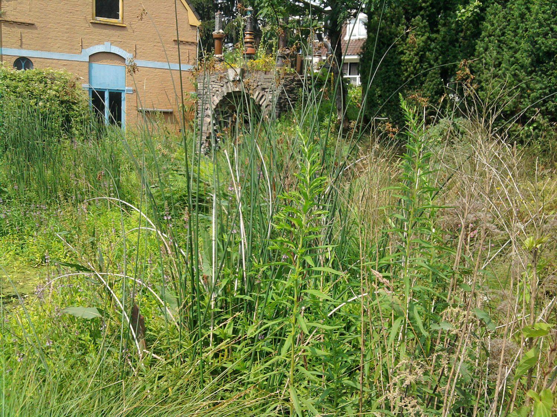 Vhl op locatie laarx excursie naar de tuin van sjef - Beurs geopend op de tuin ...