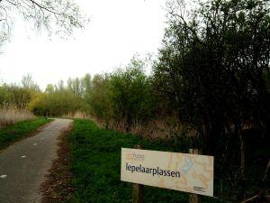Begin van het Trekvogelpad, Lepelaarplassen